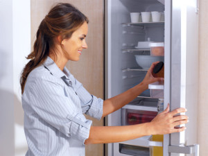 paramount appliance fridge organization